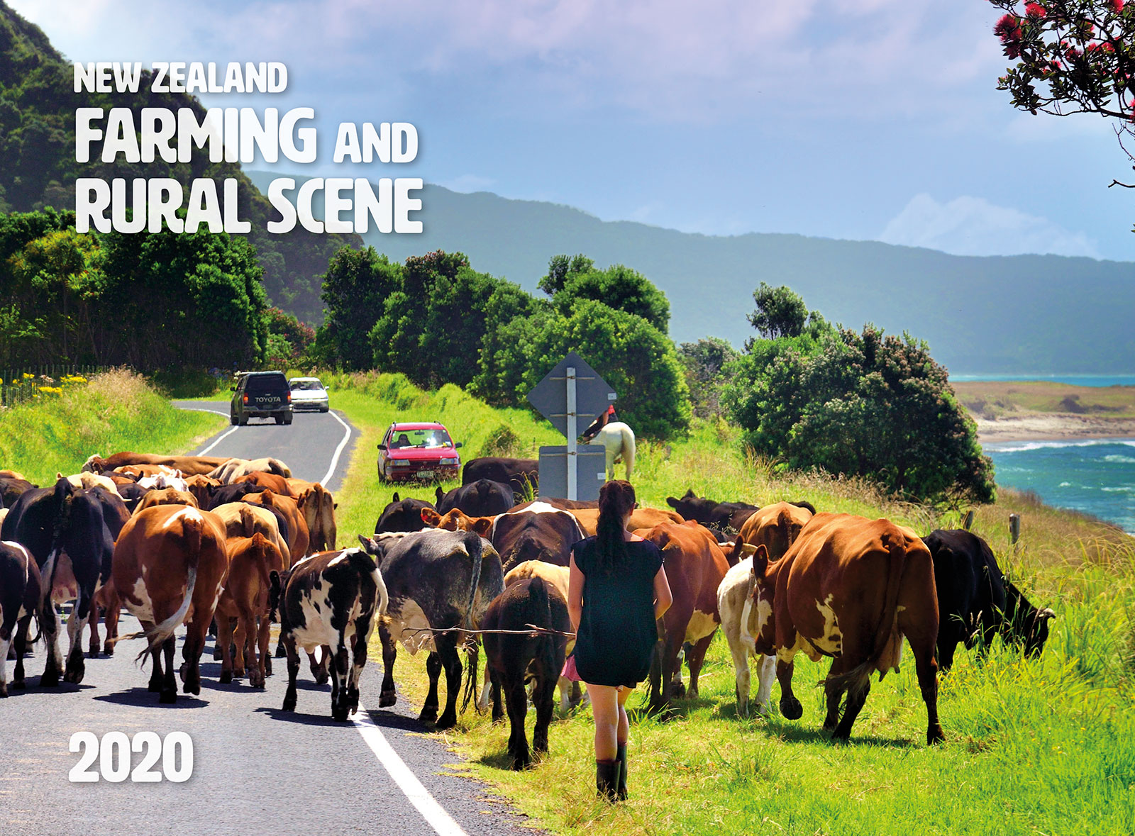 New Zealand Farming and Rural Scene 2019